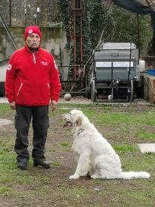 cane e padrone al corso unità cinofila